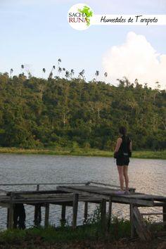 Humedales de Tarapoto, Agencia de Viajes y Turismo Sacha Runa