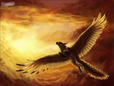 griffin flying through golden clouds. Beautiful!