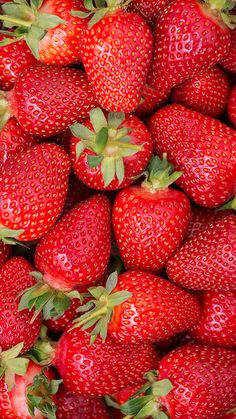 Background from freshly harvested strawberries, directly above. Strawberry Drawing, Strawberry Tattoo, Strawberry Art, Strawberry Moons, Strawberry Plants, Strawberry Smoothie, Strawberry Fields, Strawberry Pictures, Strawberry Muffins