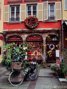 Kým vianočná nálada všade navôkol vrcholí a ľudia sa besnia za nákupmi, čo tak ísť sa pozrieť niekam, kde sa môžete cítiť ako v rozpr...