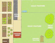backyard farm plan for a quarter acre backyard