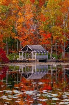 Top 10 Places to See the Spectacular Fall Colors - Pinspopulars Beautiful World, Beautiful Places, Beau Site, Autumn Scenes, Weather Underground, Seasons Of The Year, Fall Pictures, Special Pictures, Parcs