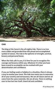1000+ ideas ... Oak Tree Symbolism Marriage