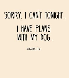 Love my dogs Dog Quotes Funny, Funny Dogs, Pet Quotes, I Love Dogs, Puppy Love, Cute Puppies, Cute Dogs, Cuddling On The Couch, Crazy Dog Lady