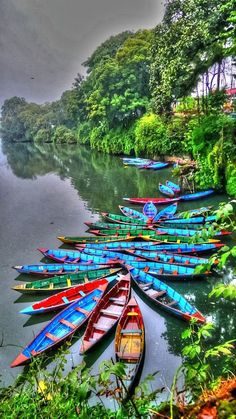 Amazing colored canoes