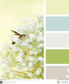 Spring Pollen - a softer take on my yellow, blue and green decor for kitchen