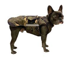 Dog Jacket for French Bulldogs - Extra Warm Winter Dog Coat - - Custom Dog Coat - Waterproof / Fleece - Custom made for your dog Waterproof Dog Coats, Dog Winter Coat, Dog Fleece, Dog Raincoat, Mini Dachshund, Dog Jacket, Brown Dog, Dog Wear, Dog Sweaters