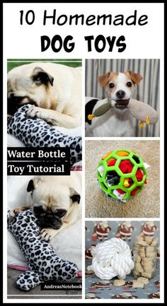 There's no reason to spend tons of money on toys from pet stores. Instead, make your own toys! Check out these 10 homemade dog toys for ideas!