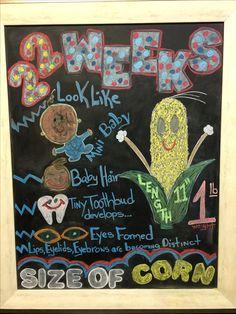 Chalkboard Pregnancy