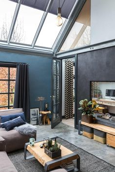 Dark coloured living room with skylights