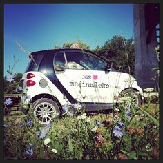 Instagram photo by @sasakersnik #smartcar #flowers #summer #slovenia #fortwo #bluesky