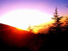 Sunset over Cedars of Lebanon, 2010
