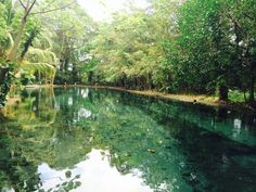 Ojo de Agua, Ometepe Island, Nicaragua. Natural spring pool