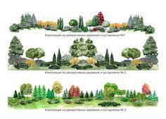 Создание групп деревьев и кустарников. - Поиск в Google