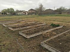 Raised beds are about 60% cleaned up for spring planting at the XLT Homestead. This is March 2016.