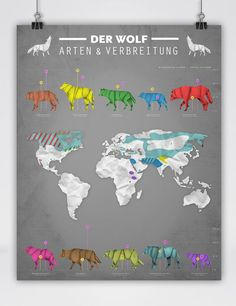 Origami Style of the Wolf Infographic• Der Wolf - Arten und Verbreitung • The Wolf - Species and Places