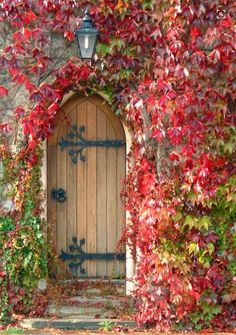 The front door may be an ideal means to reveal the attractiveness of a house. As such it's necessary to have an ideal door design that appeals to guests. Although a traditional front door will serv… Cool Doors, Unique Doors, Garden Doors, Garden Gates, Entrance Doors, Doorway, Entrance Ideas, Door Entry, Grand Entrance
