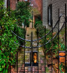 Alexandria, VA gate into an alley; LOVE this one! Yay Dad (by Jerry Gavin)