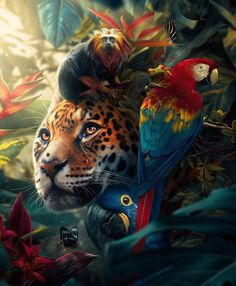 Wild Animals Pictures, Animal Pictures, Animals Beautiful, Beautiful Creatures, Wild Animal Wallpaper, Animals And Pets, Cute Animals, Tier Wallpaper, Cobra Art
