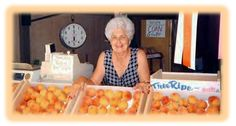 Grandma Sodaro's Peach Cobbler