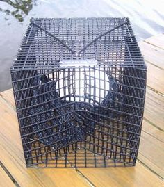 how to make your own crab trap