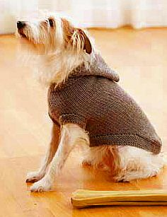 Milo would totally rock this dog hoodie! #swag #supreme ...