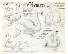 Disney studies for The Ugly Duckling