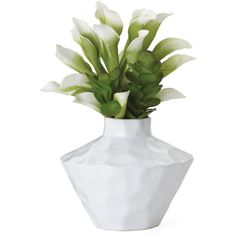 Torre & Tagus Penta Ceramic Wide Vase (393.205 IDR) ❤ liked on Polyvore featuring home, home decor, vases, fillers, plants, flowers, other, white, white ceramic vase and white vase