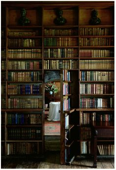 """From the book, """"The Ballroom,"""" comes this exquisite gothic-esque library with a secret door leading to tea time. Surely this must be in Manderley... or Pemberly, perhaps?"""