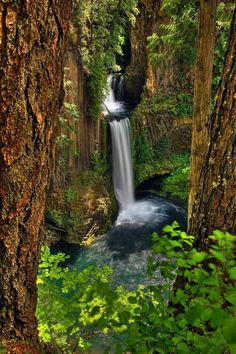 ~~..toketee falls.. ~ waterfall along the forest trail, Douglas county, Oregon by db-imagery~~