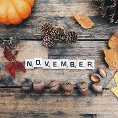 Картинки... | Блогер k-k2 на сайте SPLETNIK.RU 4 ноября 2016 | СПЛЕТНИК