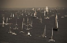 The Parade of Sail Up the Chesapeake Bay. I sailed these waters, Mid Fort Monroe, Potomac River, College Years, Hampton Roads, Chesapeake Bay, Tall Ships, Vacation Spots, White Photography, Savannah Chat