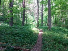 The long weekend in May meant that I could hike on both Saturday and Sunday…