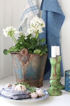 old bucket with white geraniums...B