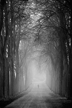 Melancholy, photographie de Gundula Walz ¿Melancolía? No. Un sitio ideal para correr autenticasbotas.com
