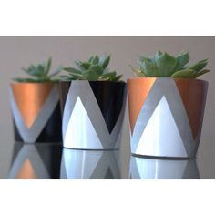 Set of 3 mini concrete planters by BelushiHandmade on Etsy Concrete Pots, Concrete Crafts, Concrete Projects, Concrete Planters, Diy Planters, Painted Plant Pots, Painted Flower Pots, Small Space Living Room, Small Spaces