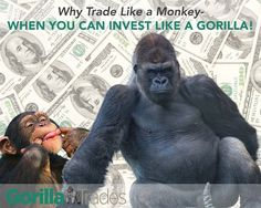 Why trade like a monkey, when you can invest like a Gorilla?!
