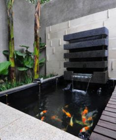 37 Cool Small Fish Pond Design Ideas To Refresh Your Outdoor - For those who have always dreamed of having something fun in their garden, building a fish pond is the way to go. This will be a charming addition, to. Outdoor Fish Ponds, Fish Ponds Backyard, Indoor Pond, Backyard Water Feature, Small Fish Pond, Koi Fish Pond, Indoor Waterfall, Pond Waterfall, Indoor Water Features