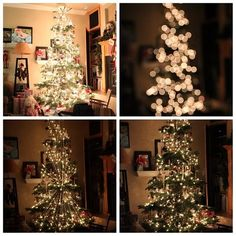 Photographing Christmas Trees Tutorial
