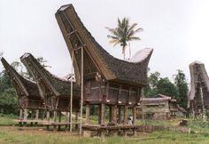 toraja houses, indonesia