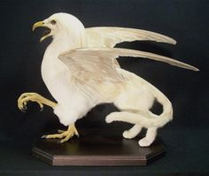 Taxidermy Arts - Sarina Brewer - Griffon