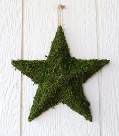 Moss Star Letters 3D Wall Hanging Moss Decor by RedRobynLane, $24.95