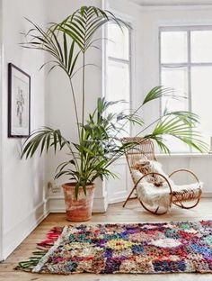 Petit plaisir végétal pour ce weekend prolongé : j'ai décidé de partager avec vous quelques photos de plantes surdimensionnées.  Certain...