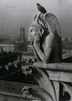Photo by Brassaï. Notre-Dame de Paris - Diable et pigeon (Devil and Pigeon) ca 1936.