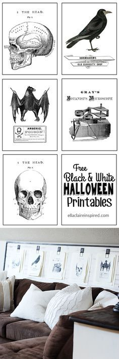 Free Black and White Vintage Halloween Printables with a link to the tutorial to make this fun Mousetrap Wall art board! details at http://ellaclaireinspired.com