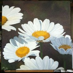 Original oil on canvas Floral Artwork, Daisies, Oil On Canvas, The Originals, Gallery, Plants, Painting, Art Floral, Margaritas