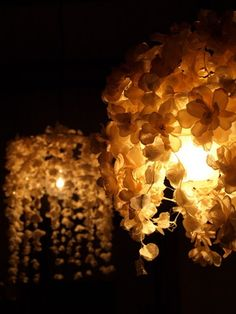 m.soeur : ランプ