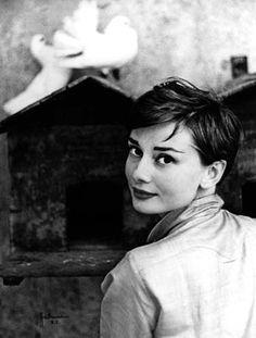 Audrey Hepburn by Philippe Halsman