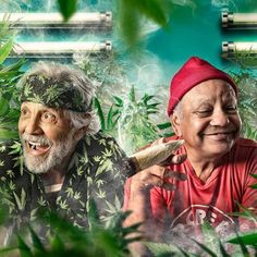 Cheech and Chong GigCity Edmonton
