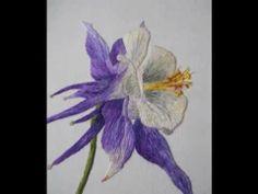 Silk shading hand embroidery by Sarah Homfray